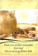 Dobbelt Julekort Fred over Jorden